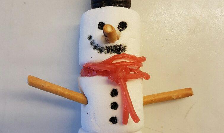 DIY sneeuwpop maken