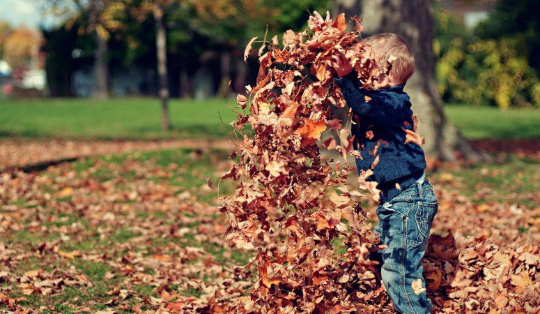 Onbezorgd buitenspelen in de herfst